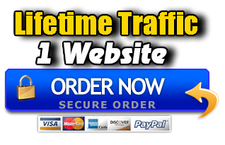Lifetime Traffic 1 Website