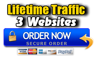 Lifetime Traffic 3 Websites